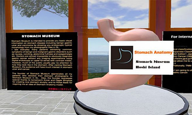In this virtual Stomach Museum, visitors will learn the basic morphology of ...